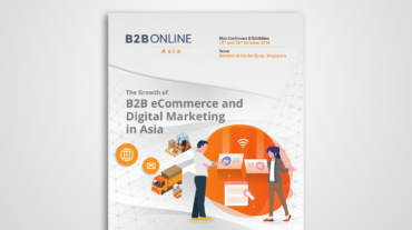 Profiling for B2B Online Asia